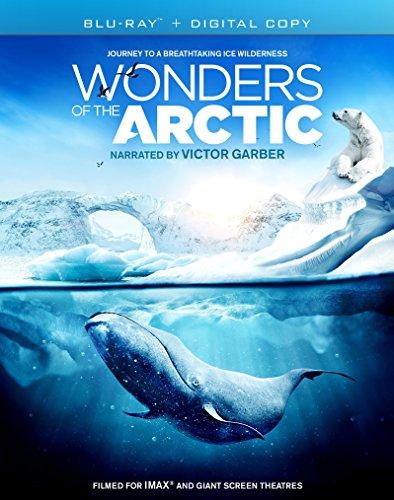 Wonders.of.the.Arctic.2014.German.DOKU.AC3.HDRip.x264-FuN