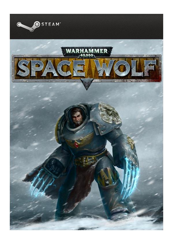 Warhammer.40.000.Space.Wolf-ALI213