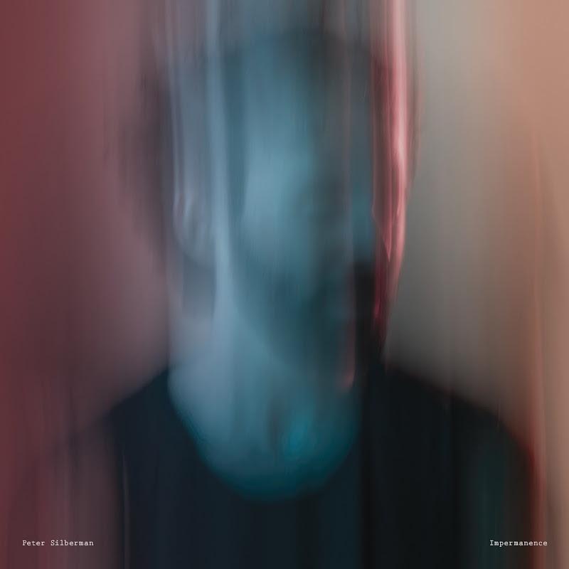 Peter Silberman - Impermanence (2017)