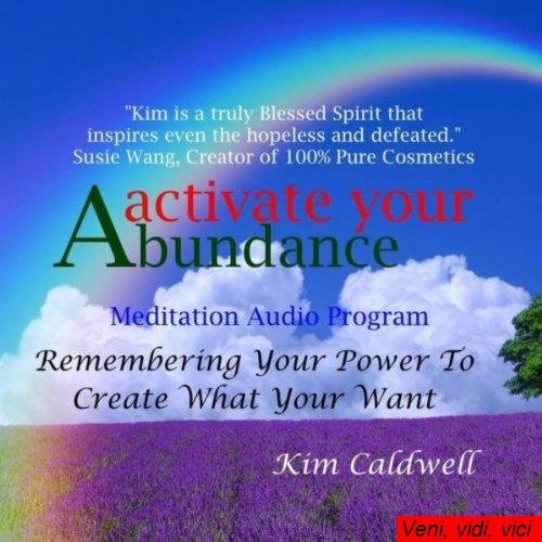 Activate Your Abundance Meditation Audio Program