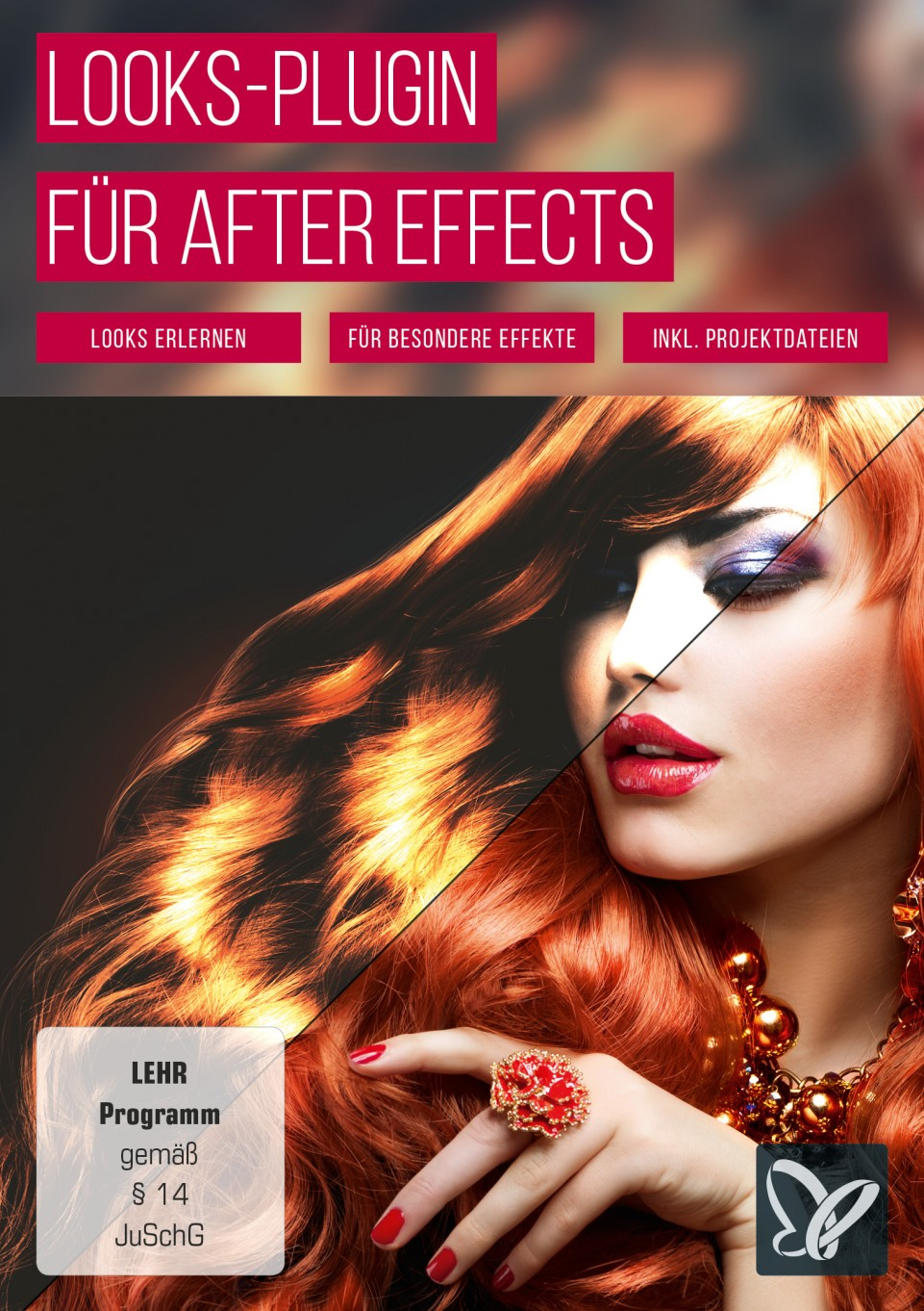 download PSD.Tutorials.Magic.Bullet.Looks.fuer.After.Effects.German-BLZiSO