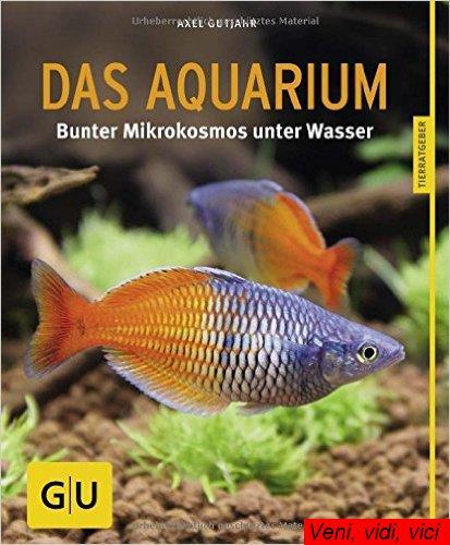 Das Aquarium Bunter Mikrokosmos im Becken