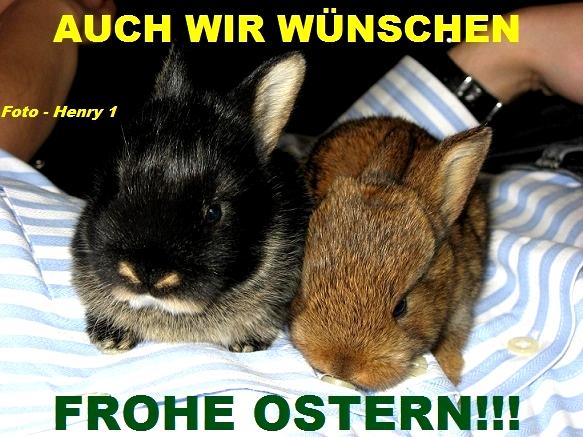 An den Beitrag angehängtes Bild: http://fs5.directupload.net/images/170313/awtmy5px.jpg