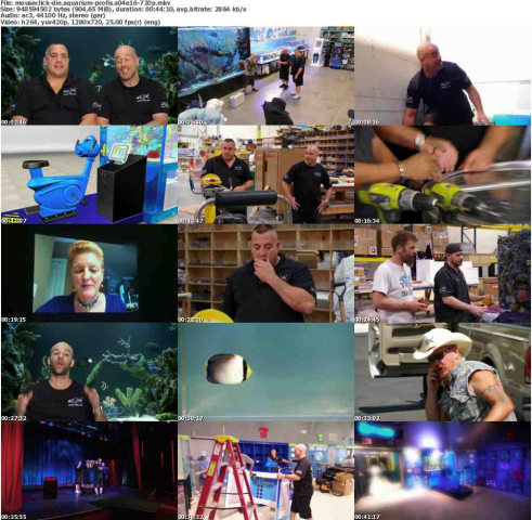 Die Aquarium-Profis S04E16 German Doku 720p WebHd x264-MousecliCk