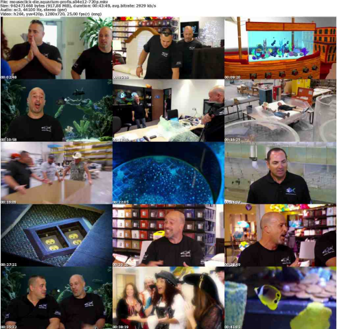 Die.Aquarium-Profis.S04E12.GERMAN.DOKU.720p.WebHD.x264-MOUSECLiCK