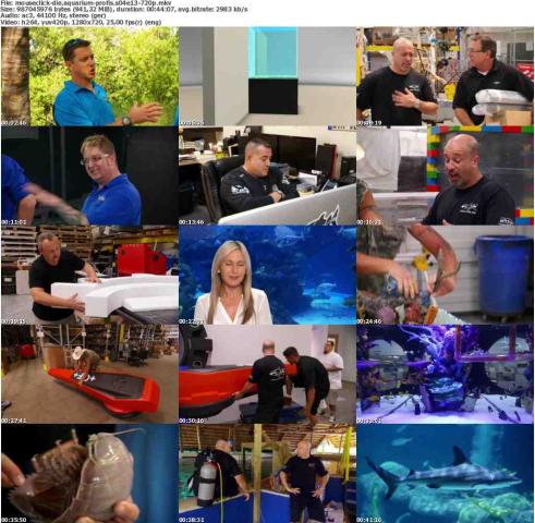 Die.Aquarium-Profis.S04E13.GERMAN.DOKU.720p.WebHD.x264-MOUSECLiCK