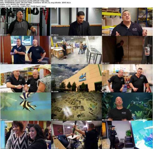 Die.Aquarium-Profis.S04E19.GERMAN.DOKU.720p.WebHD.x264-MOUSECLiCK