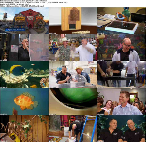Die.Aquarium-Profis.S04E22.GERMAN.DOKU.720p.WebHD.x264-MOUSECLiCK