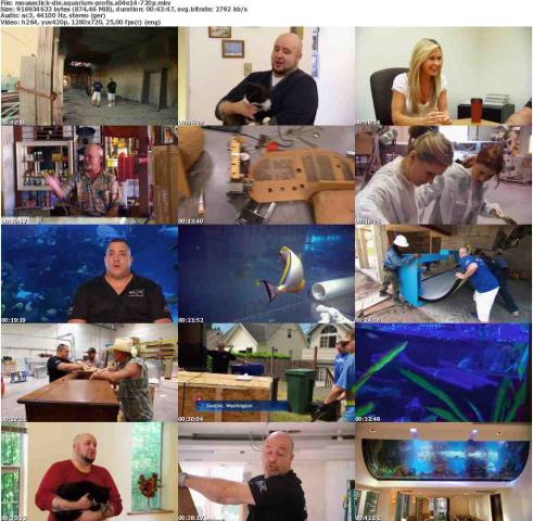 Die.Aquarium-Profis.S04E14.GERMAN.DOKU.720p.WebHD.x264-MOUSECLiCK