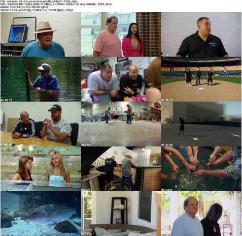 Die.Aquarium-Profis.S04E10.GERMAN.DOKU.720p.WebHD.x264-MOUSECLiCK