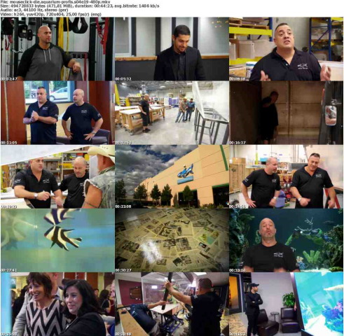 Die.Aquarium-Profis.S04E19.GERMAN.DOKU.WEBRip.x264-MOUSECLiCK