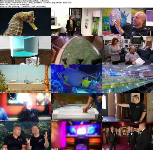 Die Aquarium-Profis S04E17 German Doku 720p WebHd x264-MousecliCk