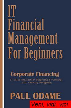 It Financial Management For Beginners Corporate Financing It Value Realization Budgeting und Planning Itil Capacity