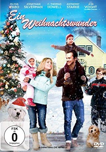 download Ein.Weihnachtswunder.German.2015.AC3.DVDRiP.x264-SAViOUR