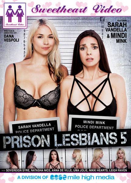 Prison Lesbians 5 Cover