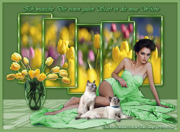 An den Beitrag angehängtes Bild: http://fs5.directupload.net/images/170327/n7ezaor8.jpg