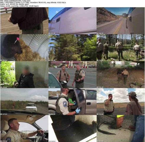 Die.Wildlife.Cops.S02E01.Im.Namen.des.Gesetzes.GERMAN.DOKU.720p.WebHD.x264-ELKOS