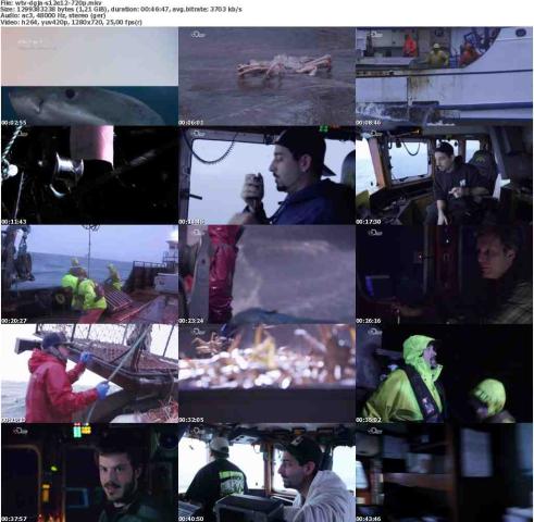Der.gefaehrlichste.Job.Alaskas.S12E12.Machtworte.GERMAN.DOKU.720p.HDTV.x264-WiSHTV