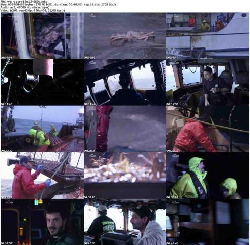 Der.gefaehrlichste.Job.Alaskas.S12E12.Machtworte.GERMAN.DOKU.HDTVRiP.x264-WiSHTV