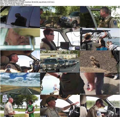 Die.Wildlife.Cops.S02E04.Erste.Hilfe.GERMAN.DOKU.720p.WebHD.x264-ELKOS