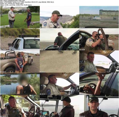 Die.Wildlife.Cops.S02E06.Der.Mann.ohne.Namen.GERMAN.DOKU.720p.WebHD.x264-ELKOS