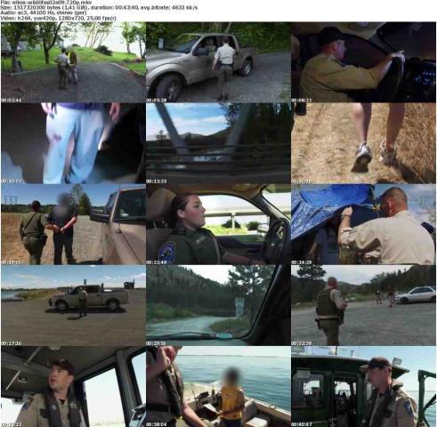 Die.Wildlife.Cops.S02E09.Einsatz.am.Strand.GERMAN.DOKU.720p.WebHD.x264-ELKOS