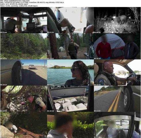 Die.Wildlife.Cops.S02E10.Schiff.sinkt.GERMAN.DOKU.720p.WebHD.x264-ELKOS