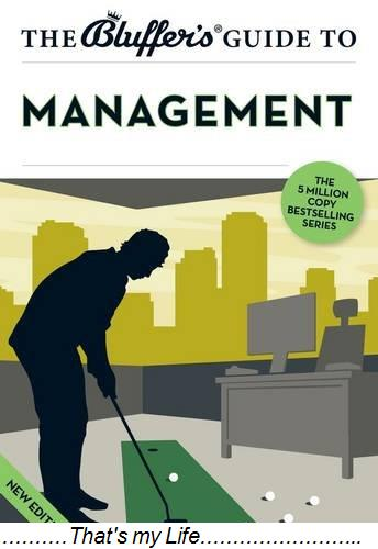 The Bluffers Guide to Management