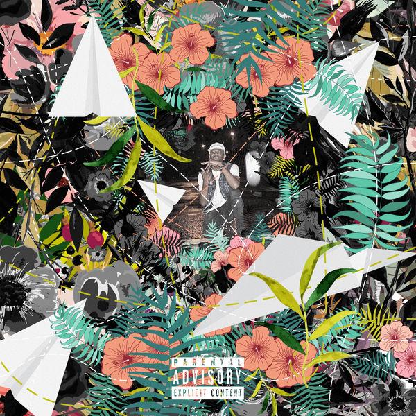 Tuki Carter - Flowers & Planes (2017)