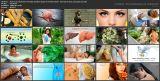 Хрен от всех болезней. 55 лучших целебных рецептов лечения (2017/WebRip)