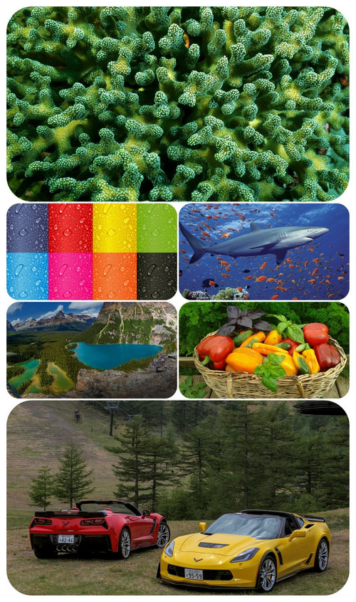 Beautiful Mixed Wallpapers Pack 449