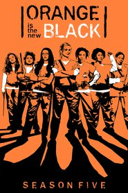 Orange.is.the.New.Black.S05.German.DD51.DL.2160p.NetflixUHD.x264-TVS