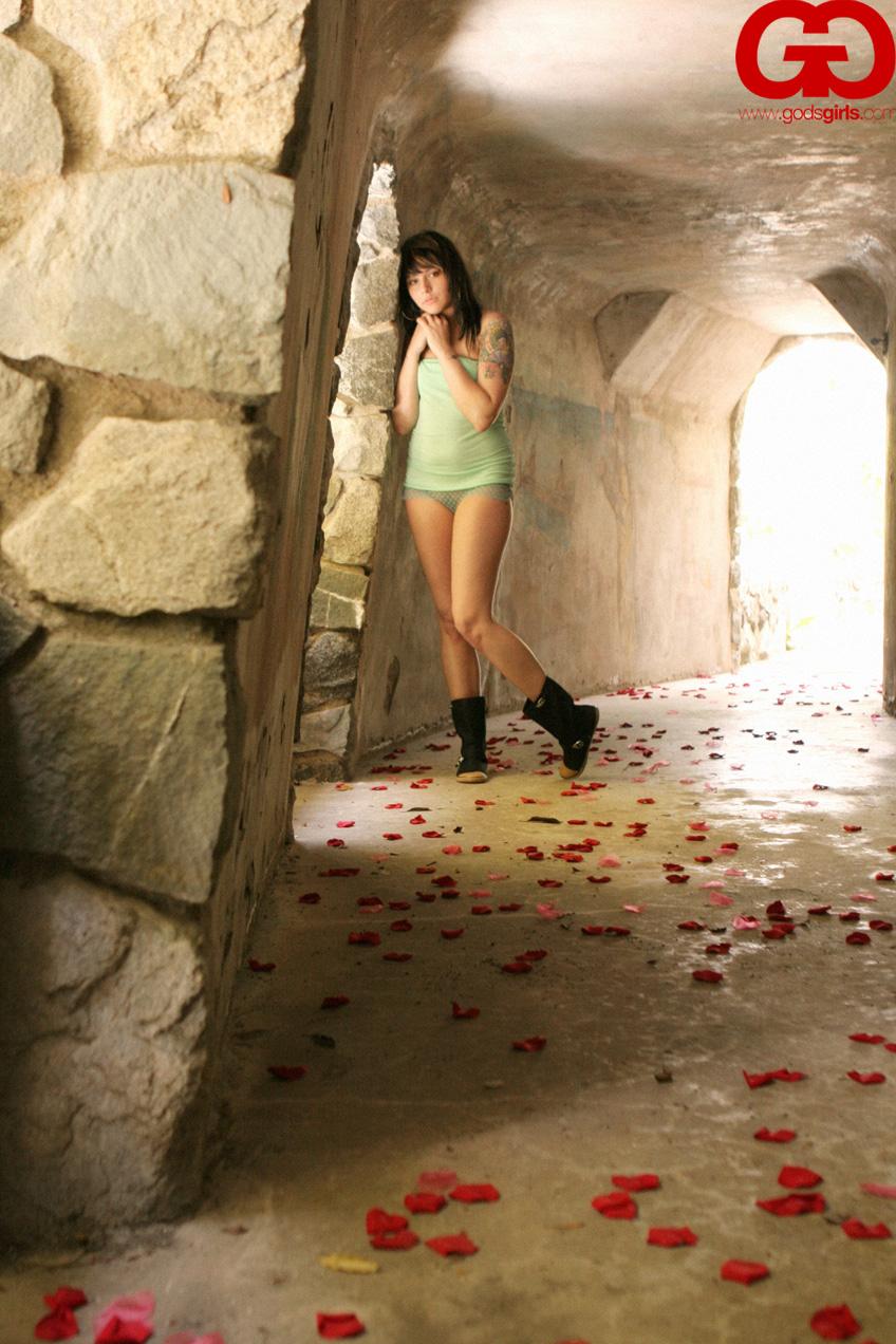 Tunnel of Love - Pics