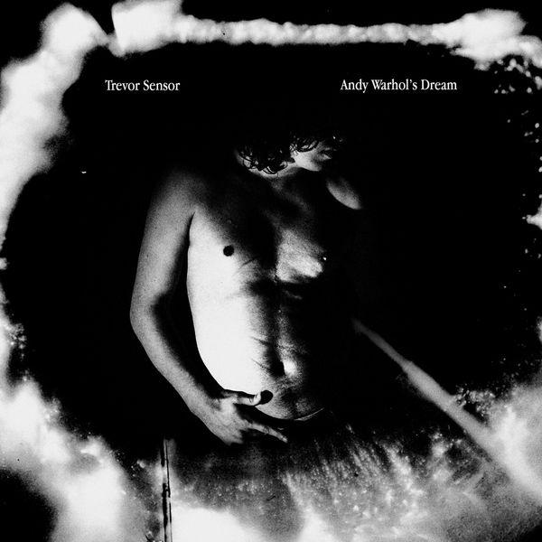 Trevor Sensor - Andy Warhol's Dream (2017)