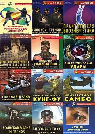 Серия - Школа спецназа (22 книги)