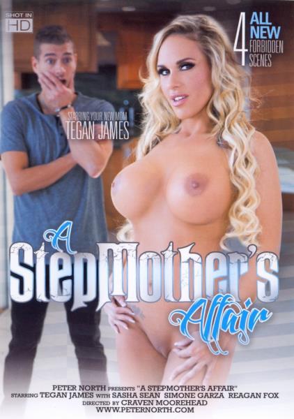 A Stepmothers Affair (2017/WEBRip/SD)