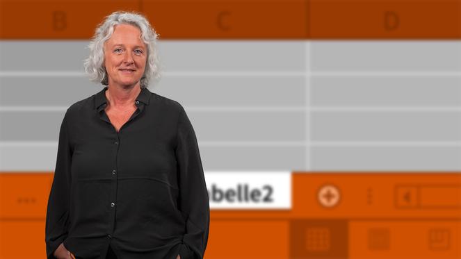 download Video2Brain.Excel.2013.Mehrere.Arbeitsmappen.und.Arbeitsblaetter.GERMAN-EMERGE