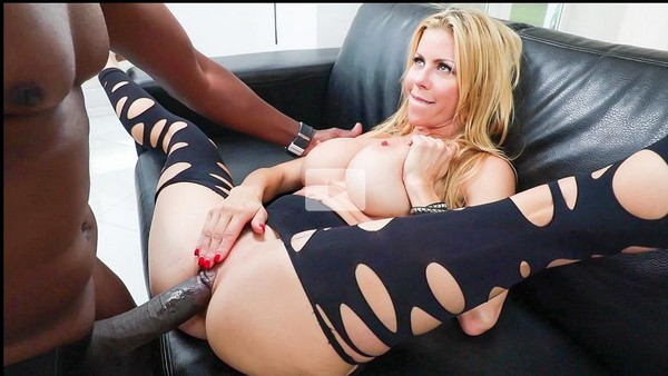 Alexis Fawx - Busty MILF Fawx 11 Interracial Inches Cover