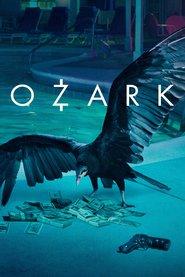 Ozark.S01.German.DD51.DL.2160p.NetflixUHD.x264-TVS