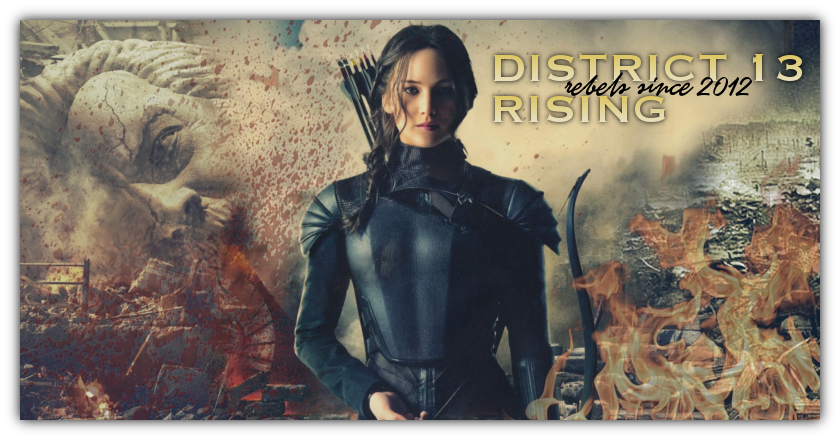DISTRICT 13 RISING