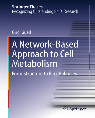 A Network Based Approach to Cell Metabolism From Structure to Flux Balances