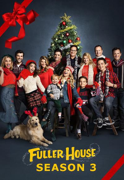 Fuller.House.S03.German.DD51.DL.2160p.NetflixUHD.x264-TVS