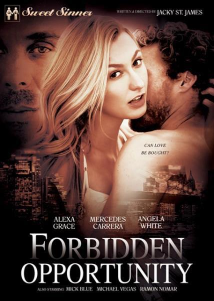 Forbidden Opportunity (2017/WEBRip/FullHD)