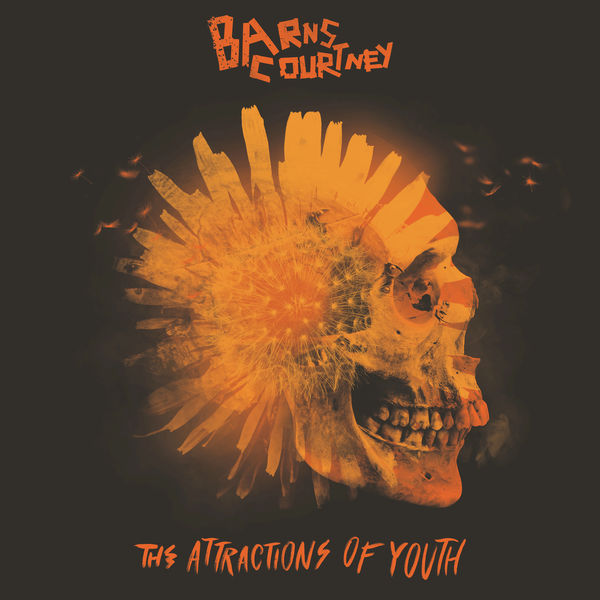 Barns Courtney - The Attractions of Youth (2017)