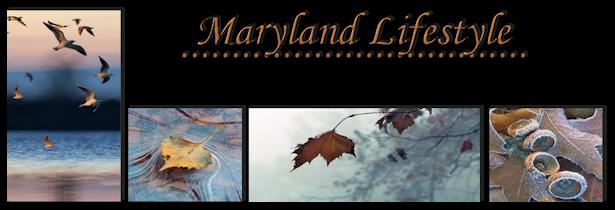 Das Maryland Lifestyle Grüßt euch ganz lieb! - Seite 3 872ev7dk
