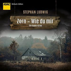 Stephan Ludwig Zorn Wie du mir Ein Saale Krimi