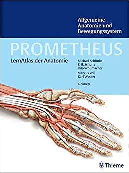 Buch Cover für PROMETHEUS Allgemeine Anatomie und Bewegungssystem LernAtlas der Anatomie Prometheus: LernAtlas der Anatomie