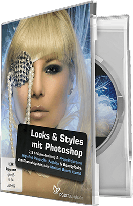 PSD.Tutorials.Looks.und.Styles.mit.Photoshop.German-BLZiSO