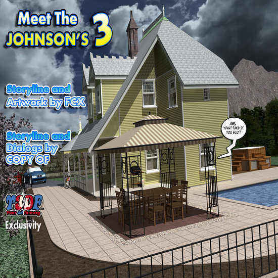 Meet The Johnsons 3 Cover
