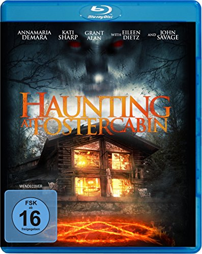 download Haunting.at.Foster.Cabin.2014.German.AC3.BDRiP.XviD-SHOWE